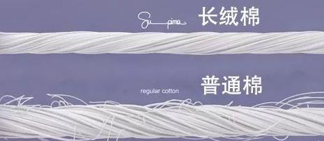 长绒棉羽绒被